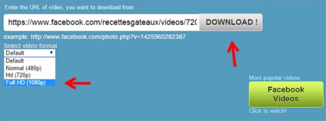 Pada-kotak-yang-tersedia-di-laman-Downvids-paste-link-dari-video-yang-tadi-sudah-Anda-salin