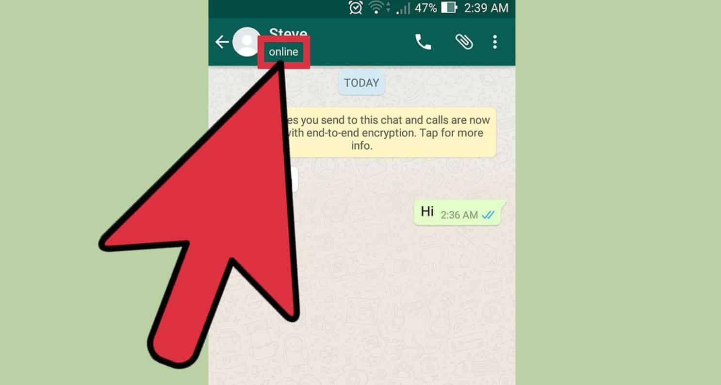 WhatsApp-Online-Padahal-Anda-Tidak-Menggunakannya